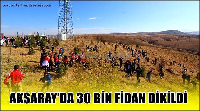 AKSARAY'IN İL OLUŞUNUN 30.YILINDA 30 BİN FİDAN TOPRAKLA BULUŞTU