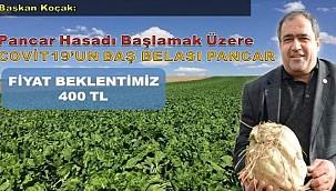 ŞEKER PANCARINDA ÜRETİCİNİN FİYAT BEKLENTİSİ TON BAŞINA 400 LİRA